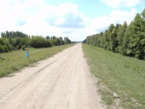 dammweg