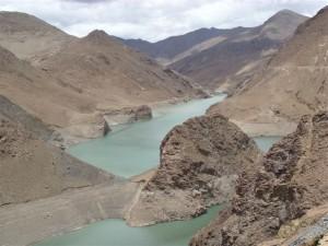 k9_Tibet_22
