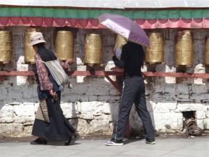 k9_Tibet_27