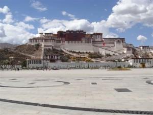 k9_Tibet_28