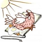 Solar oder Nichtsolar