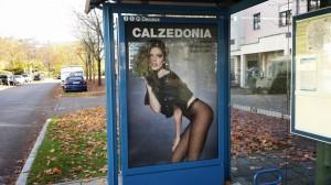 calzedonia2