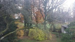 Blick aus meinem Schlafzimmer von Neubiberg rüber nach Ottobrunn. Wer findet den Laubbläser?
